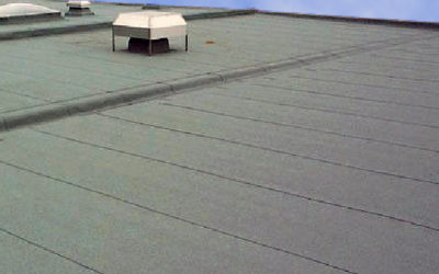 Protect Your Roof with Periodic Inspections